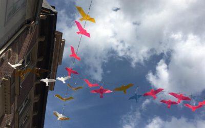 21.08.20 → Alle Vögel sind schon da